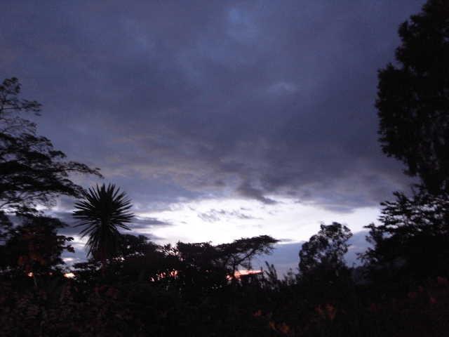 エチオピア(78) ウォンドゲネット・リゾートで夕食_c0011649_2203537.jpg