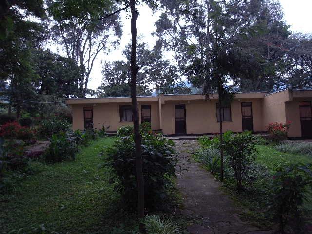 エチオピア(79) 朝のウォンドゲネット・リゾートと花々_c0011649_6385581.jpg