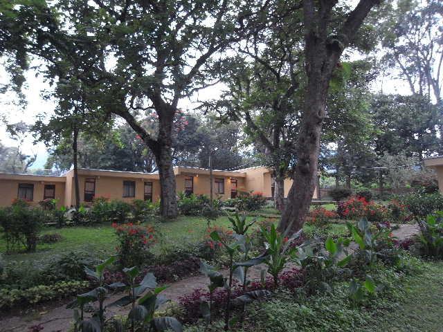 エチオピア(79) 朝のウォンドゲネット・リゾートと花々_c0011649_6392791.jpg