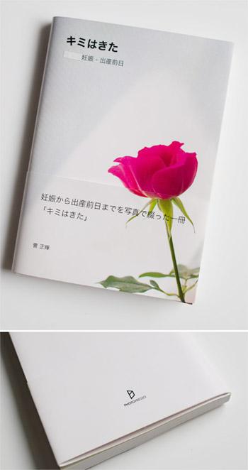 2011/06/08 プライベート写真集 Photopresso/アームレスト_b0171364_10575422.jpg