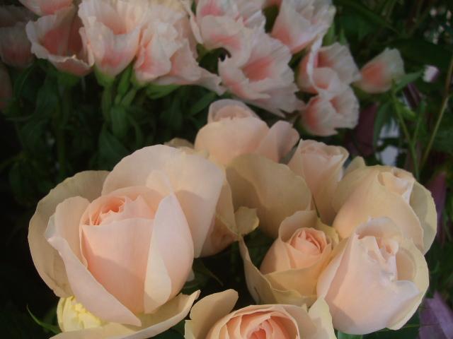 オークリーフ(紫陽花の季節)_f0049672_14121263.jpg