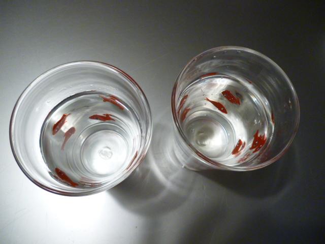 ガラスの華(日々更新の・・・つもり)_b0210699_22522884.jpg