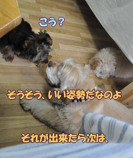 b0067012_0251881.jpg