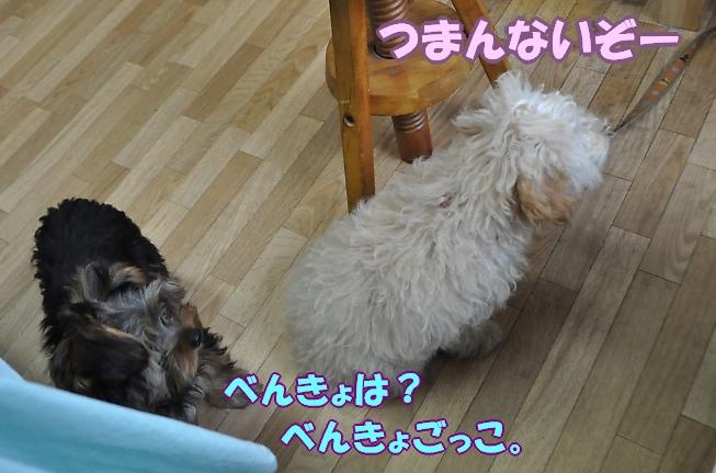 b0067012_027121.jpg