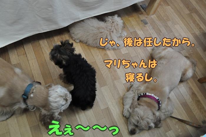 b0067012_0293531.jpg