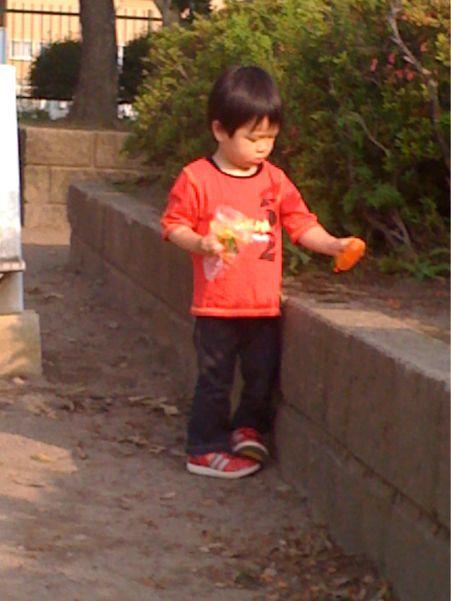 さんぽ_e0046427_16253678.jpg