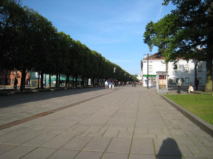 リトアニアの旅5: 行きはこわいが帰りはヨイヨイ、ただしご家庭で真似はしないで下さい_c0129545_11251528.jpg