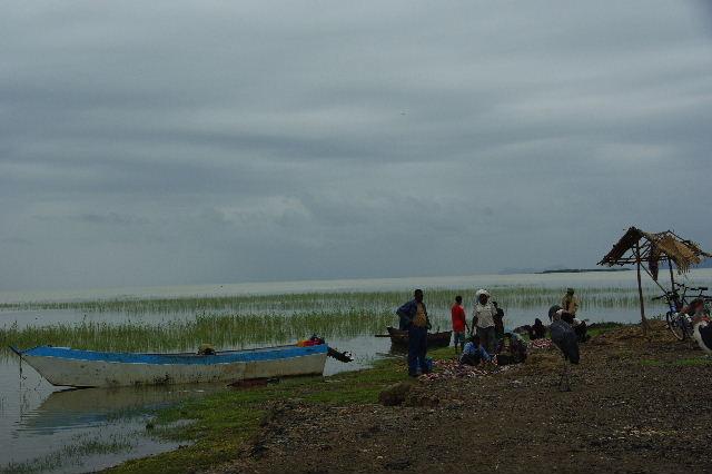 エチオピア(84) ズワイ湖の風景_c0011649_23502539.jpg