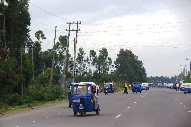 エチオピア(83) ウォンドゲネットからズワイ湖へ_c0011649_6382397.jpg