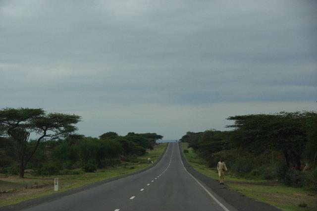 エチオピア(83) ウォンドゲネットからズワイ湖へ_c0011649_6395274.jpg