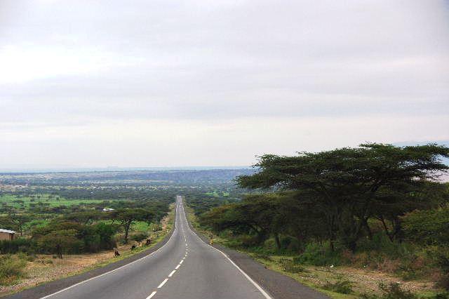 エチオピア(83) ウォンドゲネットからズワイ湖へ_c0011649_6432575.jpg