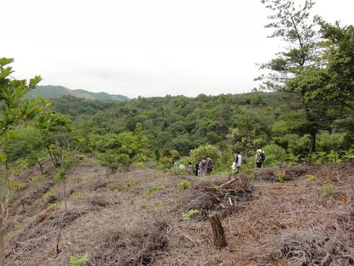 岬高校1年生「山海人プロジェクト」サポート in 孝子の森_c0108460_18115592.jpg