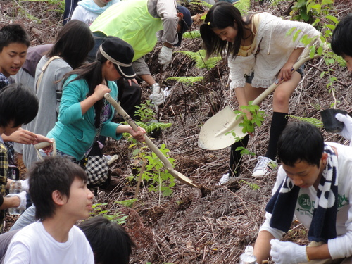 岬高校1年生「山海人プロジェクト」サポート in 孝子の森_c0108460_18162771.jpg