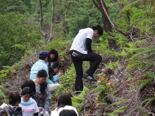岬高校1年生「山海人プロジェクト」サポート in 孝子の森_c0108460_18165993.jpg