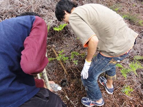 岬高校1年生「山海人プロジェクト」サポート in 孝子の森_c0108460_18174444.jpg