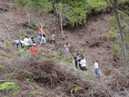 岬高校1年生「山海人プロジェクト」サポート in 孝子の森_c0108460_1823468.jpg
