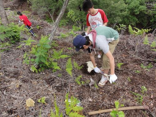 岬高校1年生「山海人プロジェクト」サポート in 孝子の森_c0108460_18241632.jpg