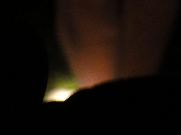 ホタル狩り第2回目 in せんなん里海公園内うみべの森_c0108460_20291216.jpg