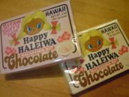 ハワイで見つけたかわいいモノ_f0204368_23191157.jpg