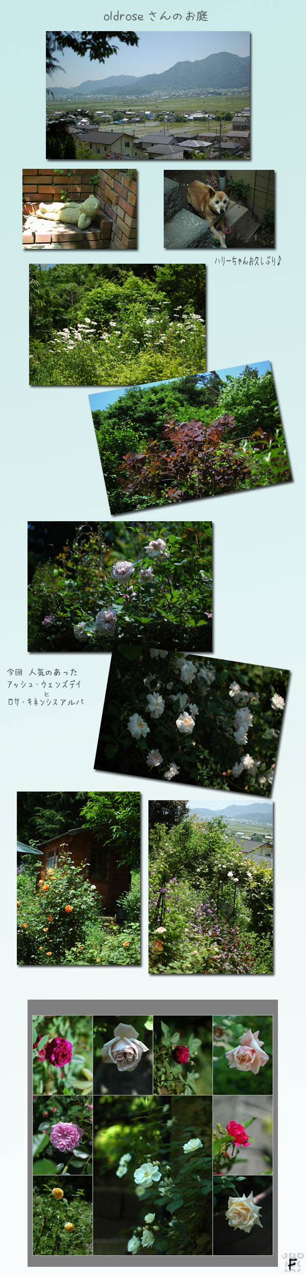 a0073275_226263.jpg