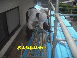 震災被害による屋根工事4日目_f0031037_20352227.jpg