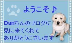 a0142343_13582753.jpg