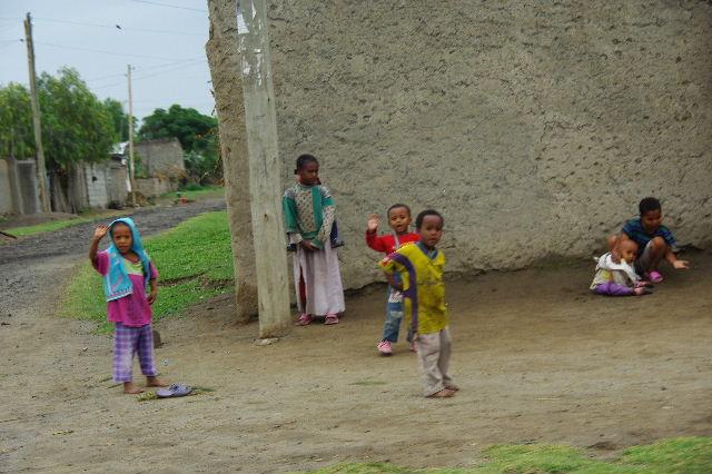 エチオピア(85) ズワイ湖からアジスアベバへ、そして帰国_c0011649_5343977.jpg