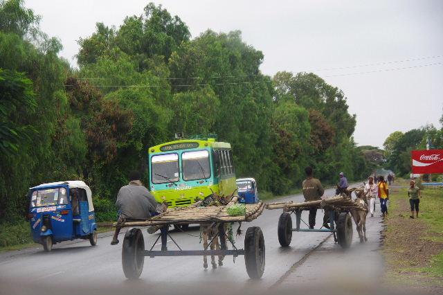 エチオピア(85) ズワイ湖からアジスアベバへ、そして帰国_c0011649_544691.jpg