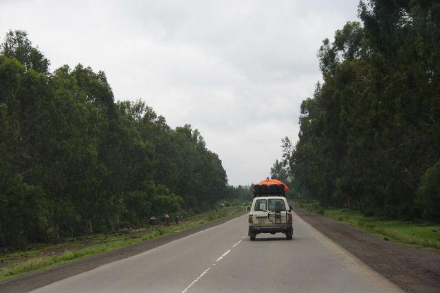 エチオピア(85) ズワイ湖からアジスアベバへ、そして帰国_c0011649_5481023.jpg