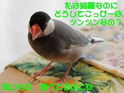b0158061_22141066.jpg