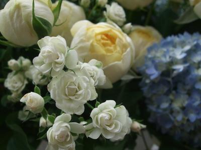 オークリーフ(ブルーベリーと2種のバラのアレンジメント)_f0049672_14353250.jpg