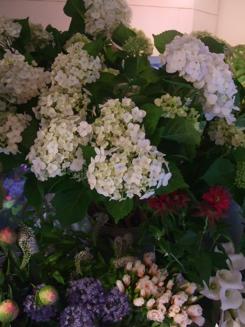 オークリーフ(ホタルブクロの咲く季節)_f0049672_17573185.jpg
