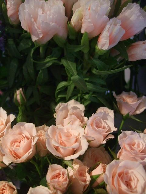 オークリーフ(ホタルブクロの咲く季節)_f0049672_1854411.jpg