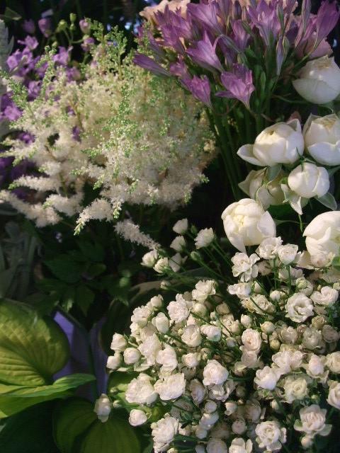 オークリーフ(ホタルブクロの咲く季節)_f0049672_185888.jpg