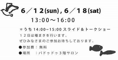 Little Lifeさんの写真展&おはなし会_e0028387_233049.jpg