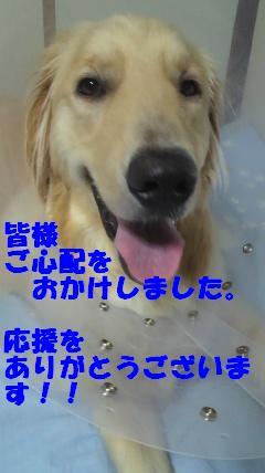 b0206300_18125510.jpg