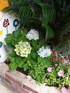 サロンドムーの花たち_a0123703_15563673.jpg