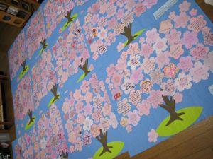 桜プロジェクト  〜ラストスパート〜_a0119263_16472488.jpg