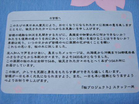 桜プロジェクト  〜ラストスパート〜_a0119263_16544533.jpg