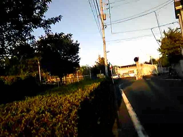 ワキュお散歩:石神井川沿い3 [20090815]_a0021565_2355438.jpg