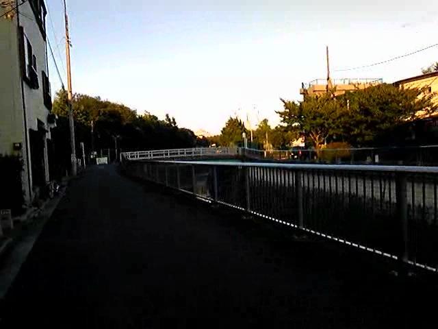 ワキュお散歩:石神井川沿い3 [20090815]_a0021565_23555886.jpg