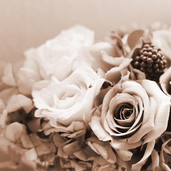 レトロなお花を撮る♪_a0189805_22201619.jpg