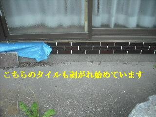 f0031037_19542237.jpg