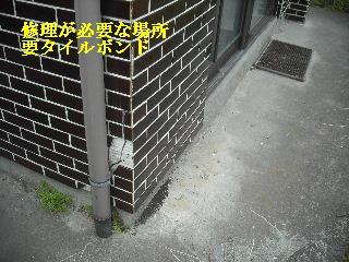 f0031037_19543215.jpg