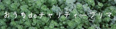 c0081453_13303969.jpg