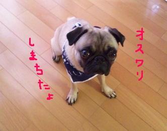 b0197865_1011151.jpg