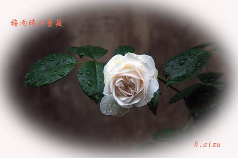 b0012595_14395450.jpg