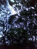f0081414_15591875.jpg