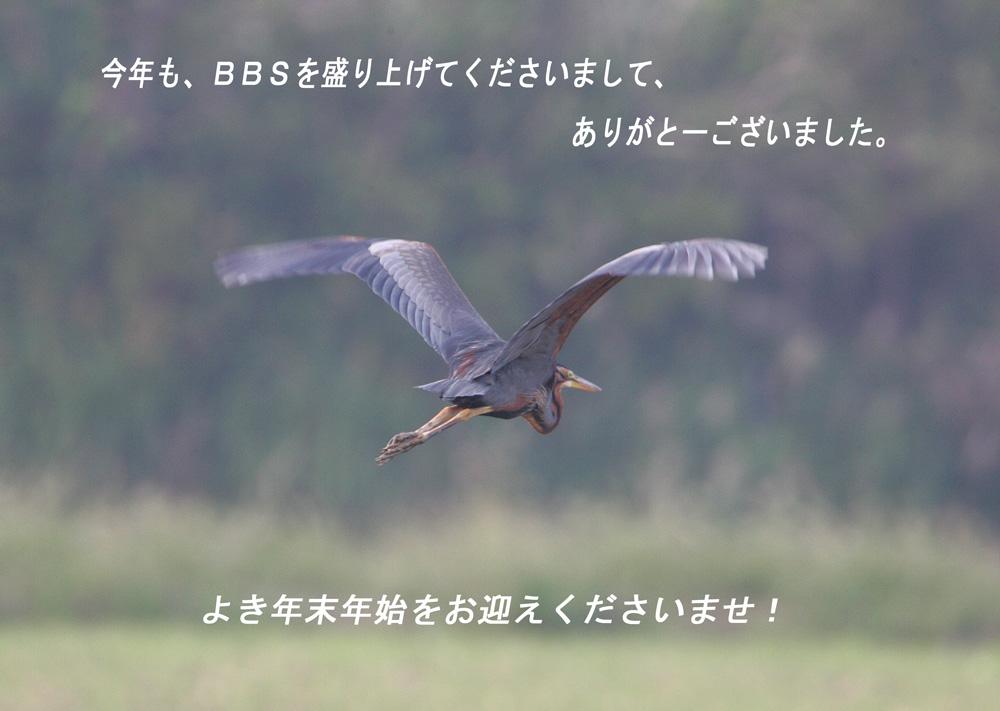 f0181821_16263245.jpg