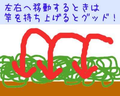 対山林に妙技_f0182936_23262330.jpg